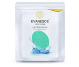 Evanesce New York Ivory Body Sponge