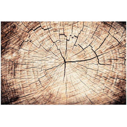 A Crack In Time | Acrylic Print