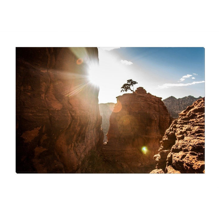 The Tree On Bell Rock | Canvas Wrap