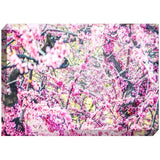 Spring Blossoms | Acrylic Block