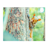 Squirrelly | Canvas Wrap