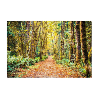 Path To Bainbridge | Canvas Wrap
