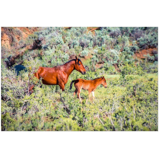 Mother & Daughter | Acrylic Print