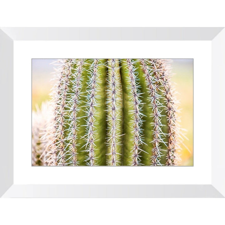 Sharp | Framed Print