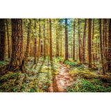Enchanted Forest | Metallic Print