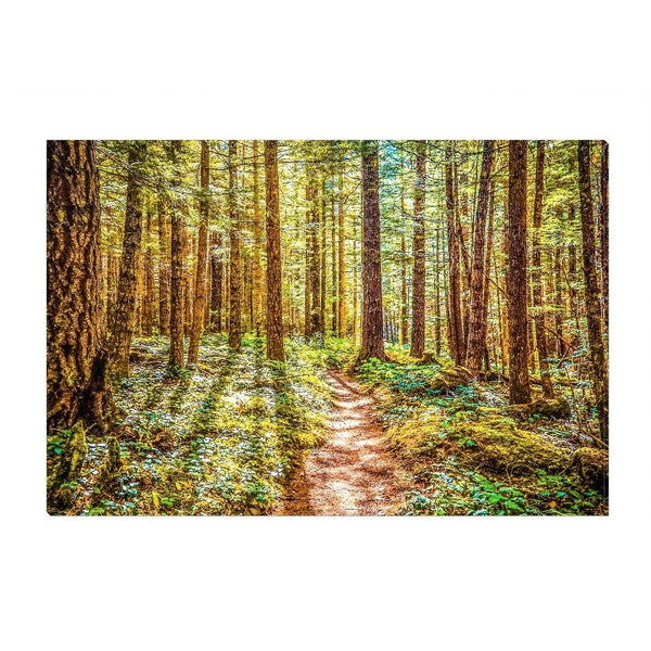 Enchanted Forest | Canvas Wrap