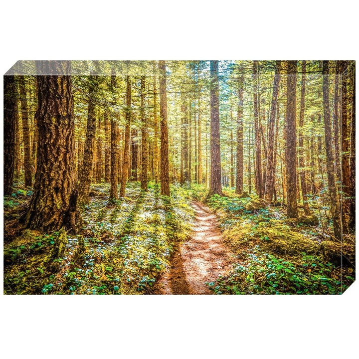 Enchanted Forest | Acrylic Block