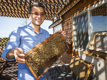 Vancouver Sun: Honey produced at South Surrey farm gathers international awards