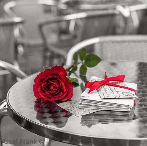 Rose on a Table