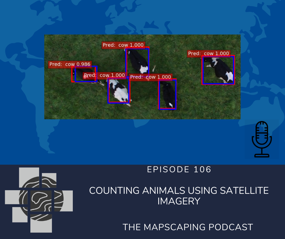 Counting Animals Using Satellite Imagery