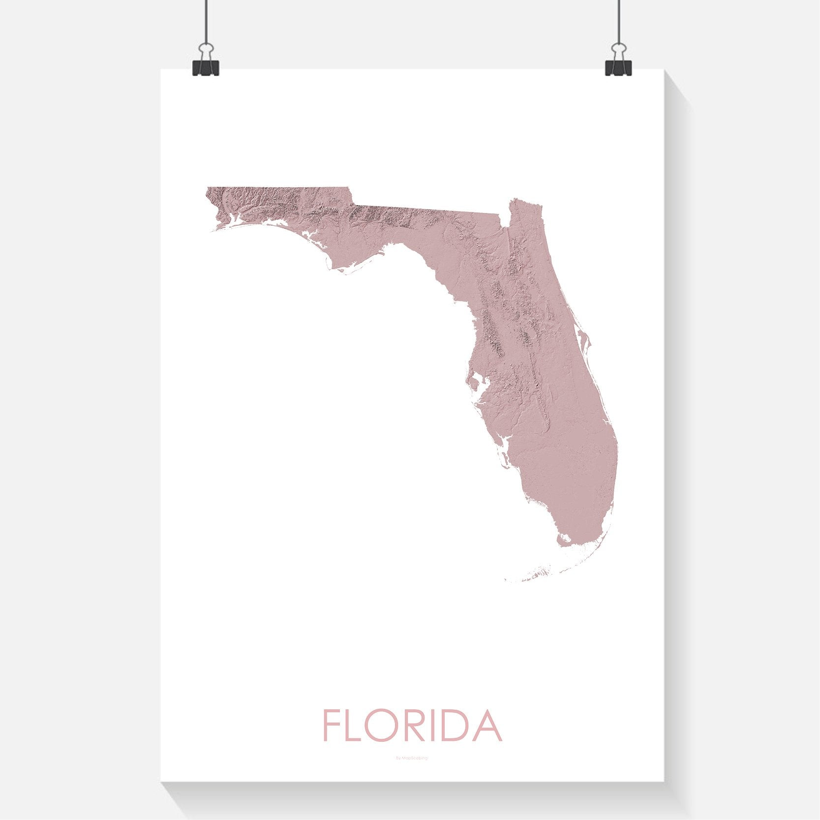 Florida topographic wall art map - MapScaping.com