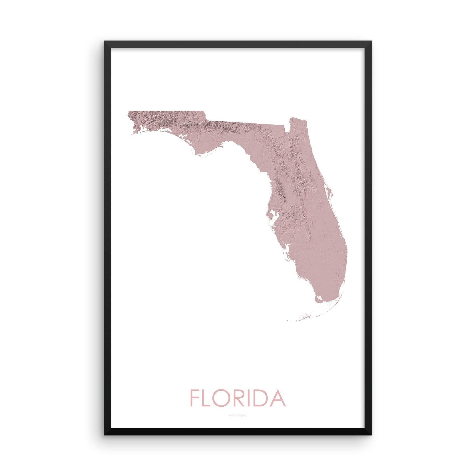 Florida Map 3D Rose-Topographic Map