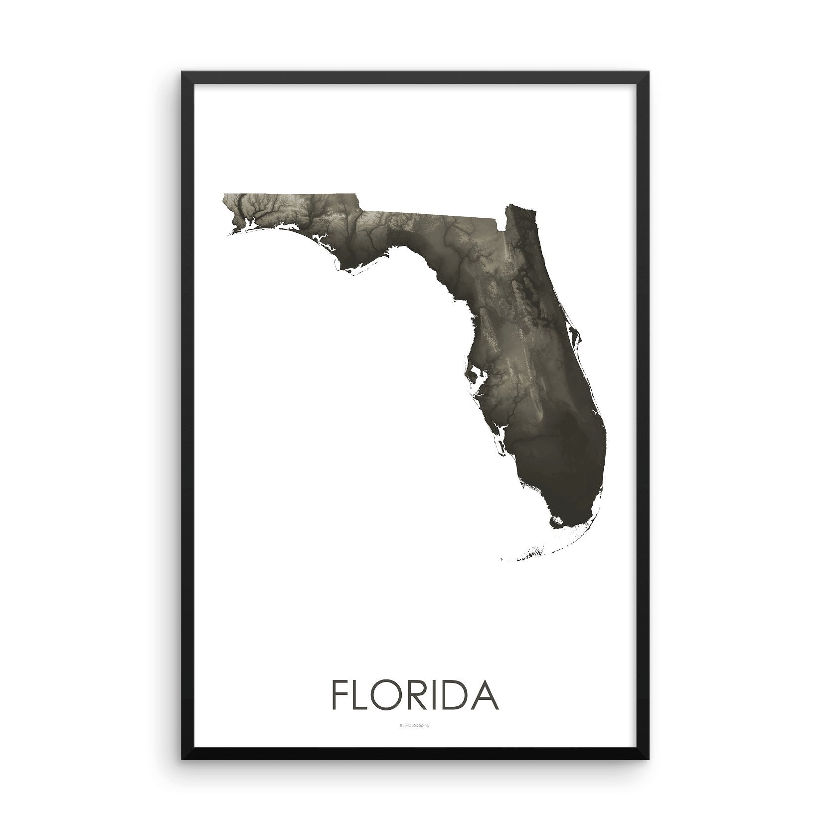 Topographic Map Of Florida.Florida Topographic Wall Art Map Mapscaping Com