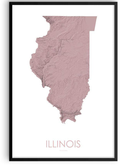 Illinois Poster 3D Rose-topographic wall art map by MapScaping