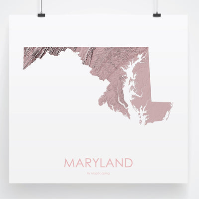 Maryland Map 3D Rose-Topographic Map