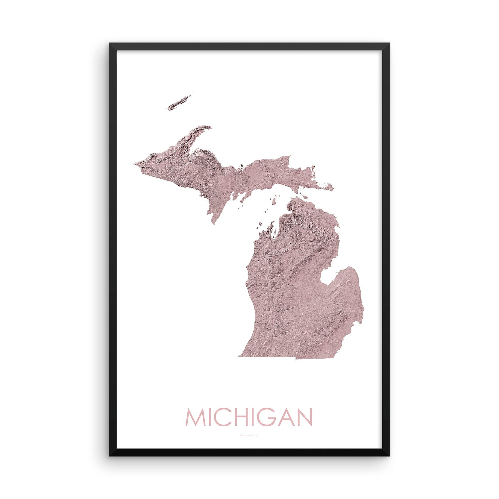 Michigan Map 3D Rose-Topographic Map