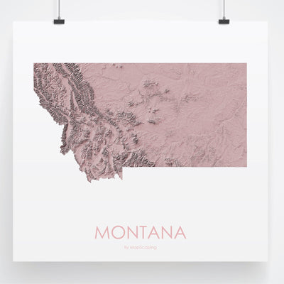 Montana Map 3D Rose-Topographic Map