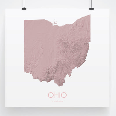 Ohio Map 3D Rose-Topographic Map
