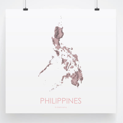 Philippines Map 3D Rose