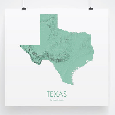 Texas Map 3D Mint-Topographic Map