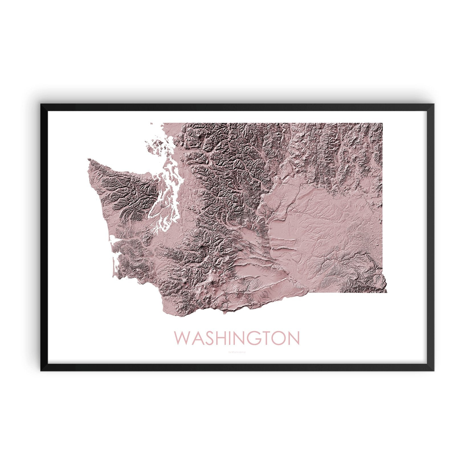 Washington Map 3D Rose-Topographic Map