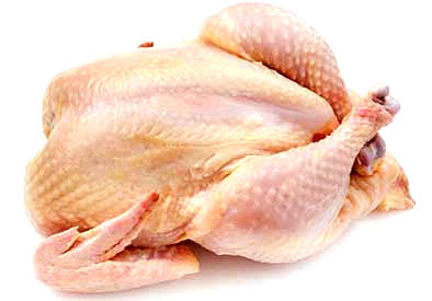Fresh Chicken Broiler