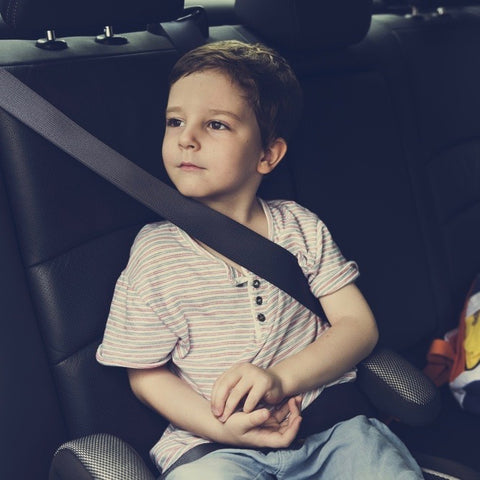 Child in a seatbelt