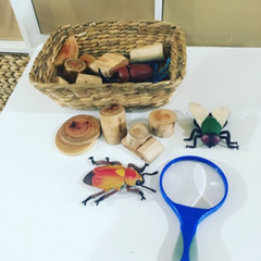 Toy bugs and a magnifying glass for science discovery