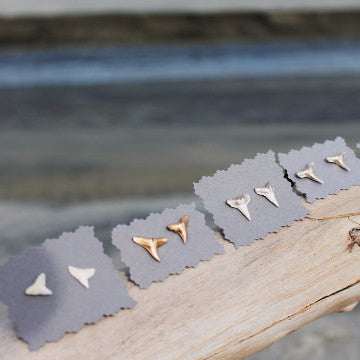 Handpainted Shark Tooth Earring Studs - Gold + White + Silver // made in Charleston, SC