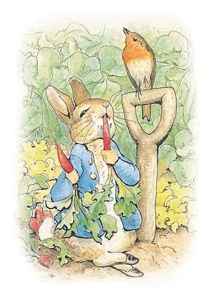 Peter Rabbit Eating Radish Beatrix Potter Birthday Greeting Card