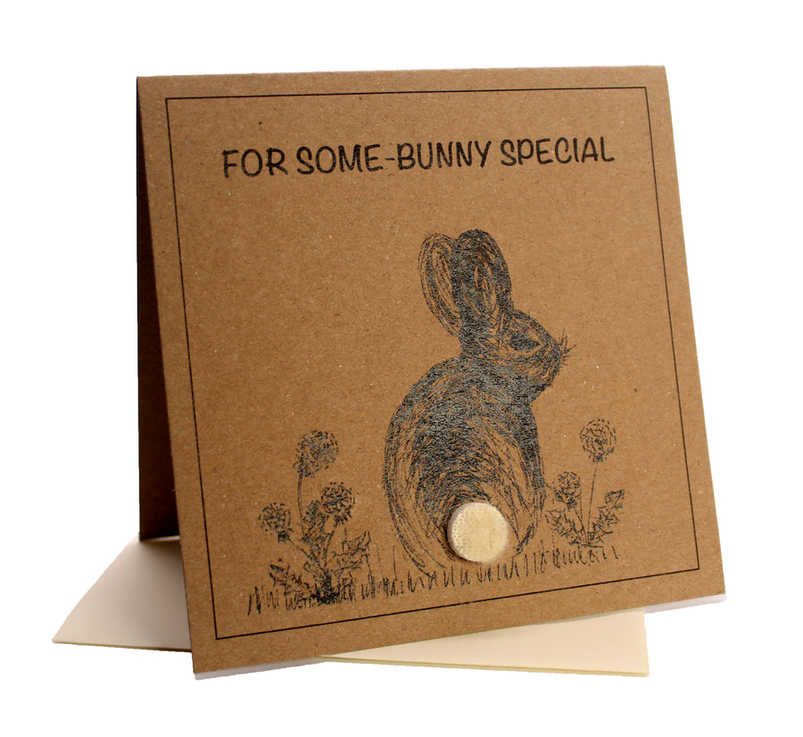 Bunny (For Some-bunny Special) Birthday Card