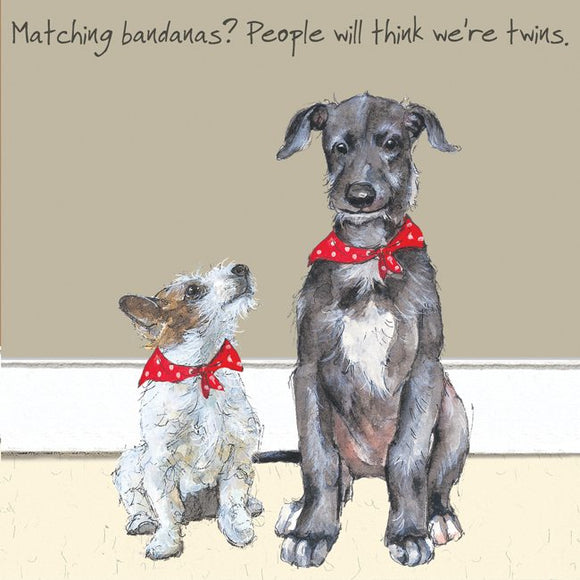 Scottish Deerhound & Terrier Dog (Matching Bandanas) Greeting / Birthday Card