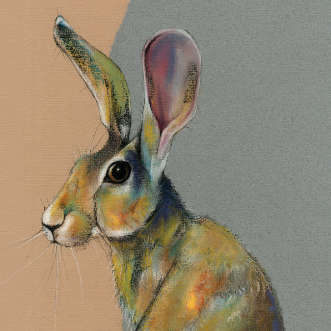 Marjorie The Hare Greeting / Birthday Card