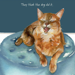 Lilac Somali Cat (They think the dog did it.) Greeting / Birthday Card