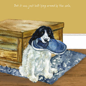 Black & White Sprocker Dog (But it was just left lying around by the sofa.) Greeting / Birthday Card