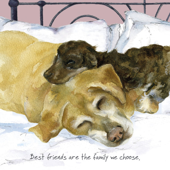Yellow Labrador Dog (Best friends are the family we choose.) Greeting / Birthday Card