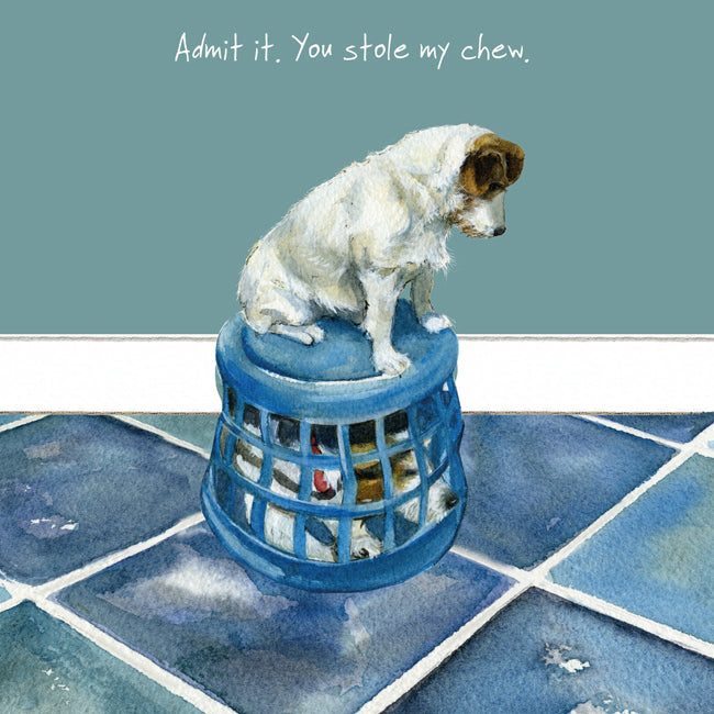 Jack Russell Dog (Admit it. You stole my chew.) Greeting / Birthday Card