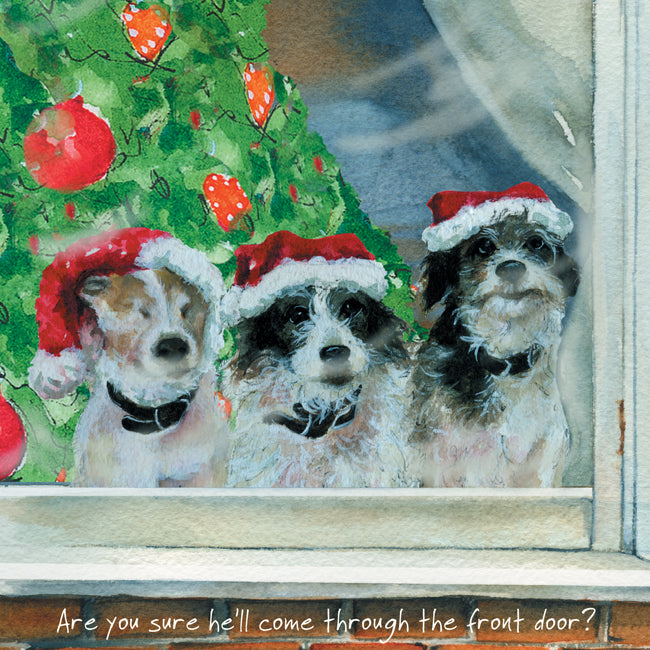 Terrier (Are you sure he'll come through the front door?) Dog Christmas Card