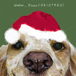 Spaniel Dog (Woohoo ... It'sssss C H R I S T M A S!) Christmas Card