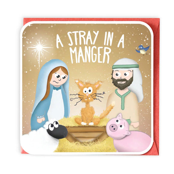 A Stray In A Manger Christmas Card