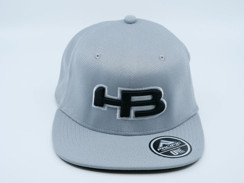 HB Exclusive OTX60 ONETOUCH Fitted Hat: Silverback