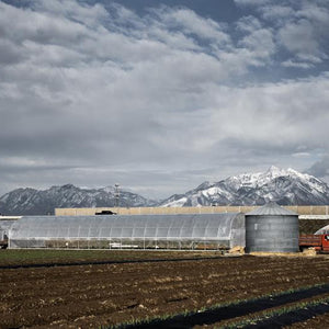 farm building with mountains