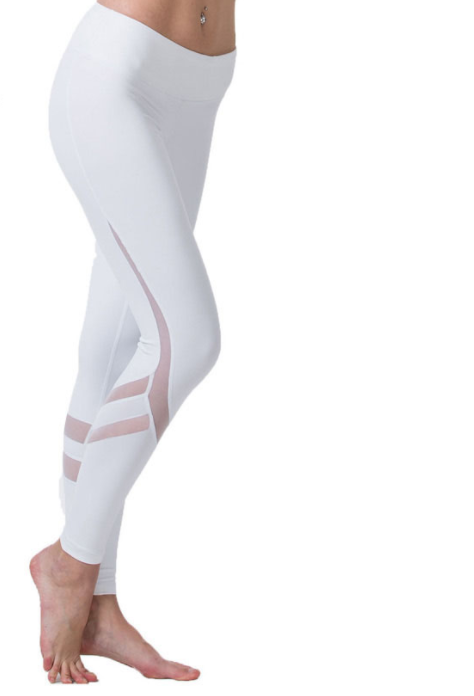 Women Mesh Fitness Leggings
