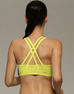 Women Shakeproof Sports Bra -Sports Bra