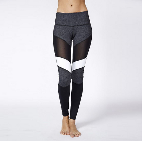 Women Sexy Mesh Splice Leggings -Yoga Pants