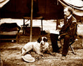 Custer and Dog