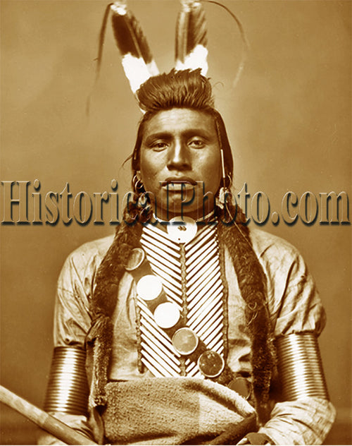 Chief White Bull