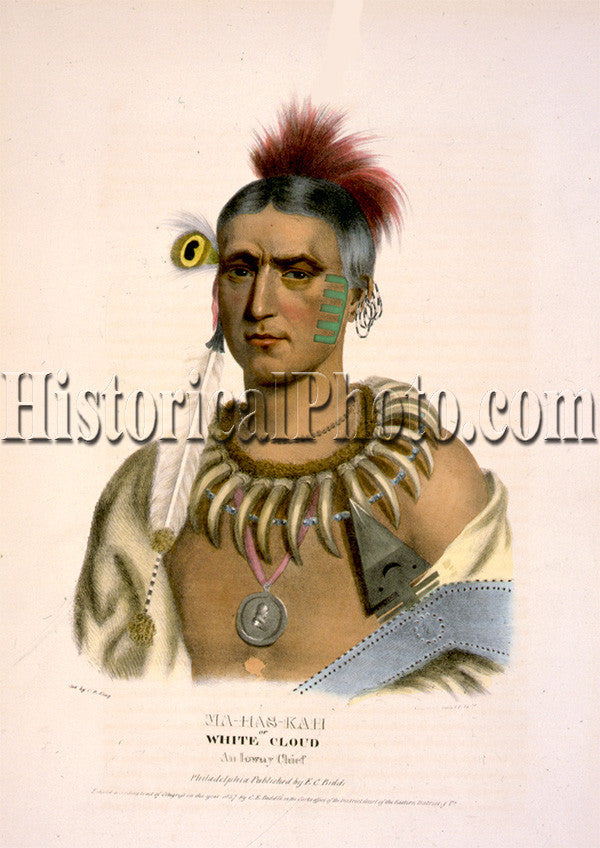 Ma-Has-Kah or White Cloud, an Ioway Chief