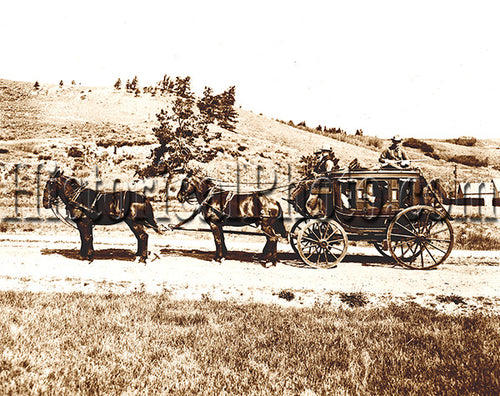 Yellowstone Stagecoach