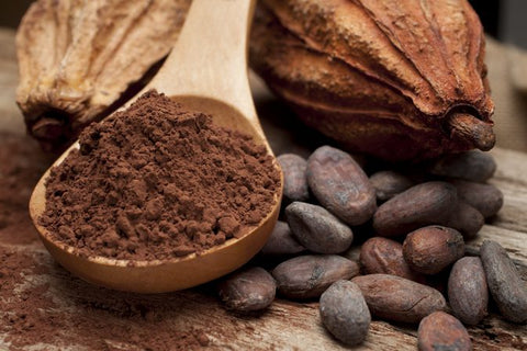 raw cacao plant-based protein